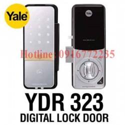 yale-323
